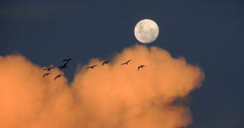 jak fotografować księżyc?