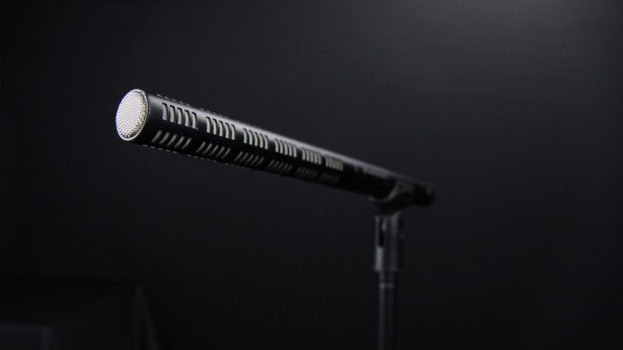 microphone-772573_1280