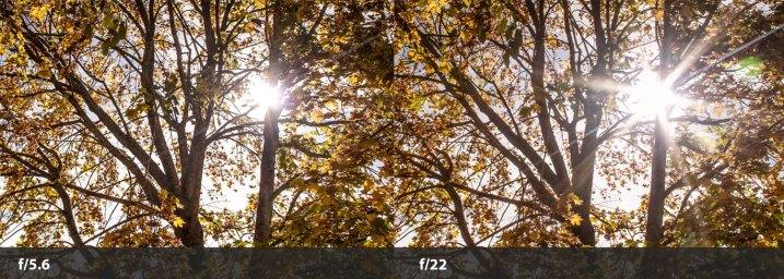 sun-flare-tips-wide-narrow-aperture