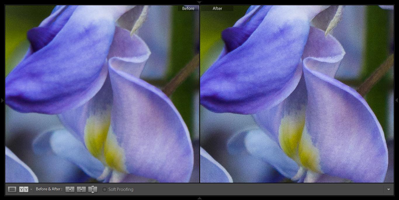 Po lewej znajduje się zdjęcie przed wyostrzaniem, natomiast fotografia po prawej została poddana działaniu tej funkcji.