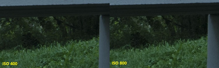 iso400 - 800 (1)