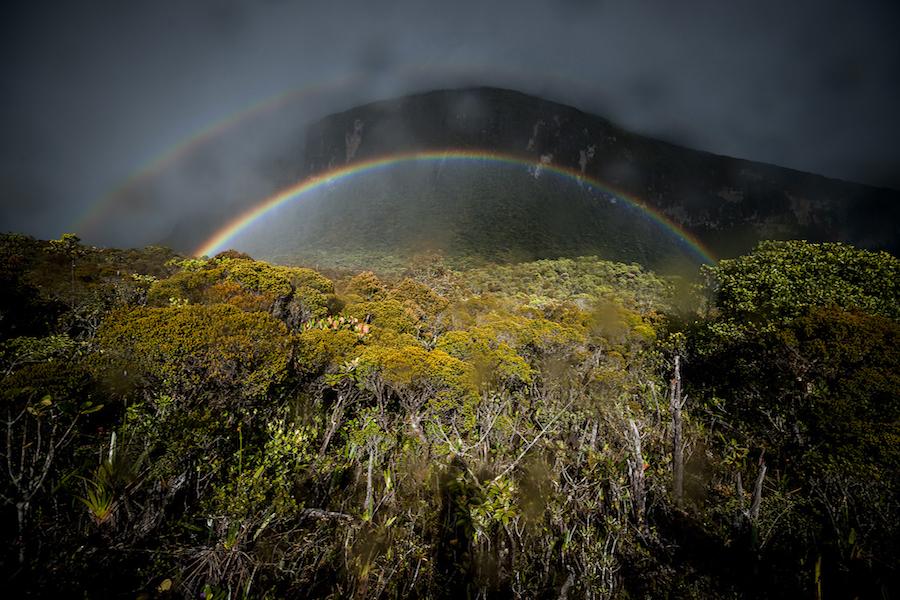 Zestaw do profesjonalnej fotografii - Ultra szeroki kąt 16mm w połączeniu z wysokiej klasy matrycą daje świetne efekty w fotografii pejzażowej. SAL1635F28Z Wenezuela, rok 2011.