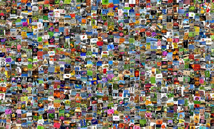 fotograficzne postanowienie noworoczne 365 zdjec