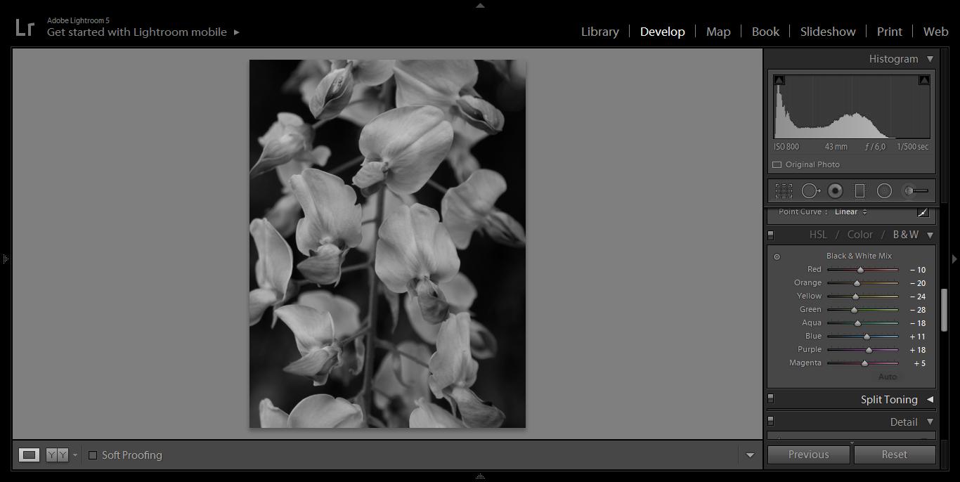 1 b i w mix fotografia czarno biała funkcja