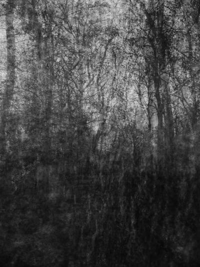 multiekspozycja abstrakcyjne czarno biale