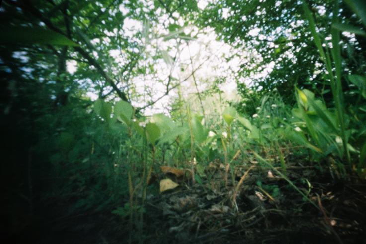 fotografia otworkowa pinhole 3