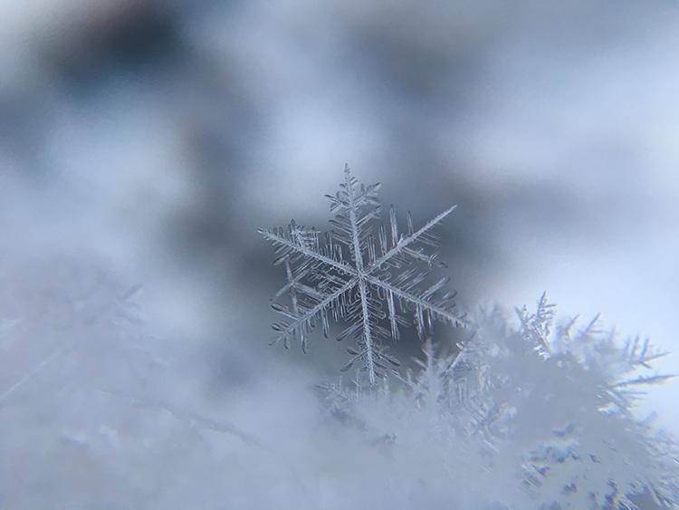 fotografowanie zima platek sniegu