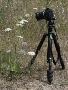 statyw do makrofotografii z dala