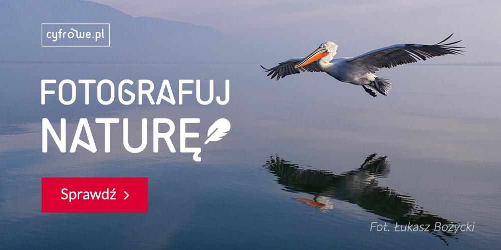 cyfrowe_fotografuj-nature_1000x500