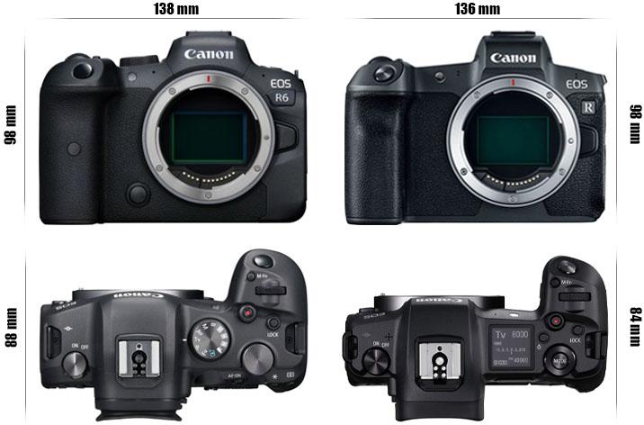 Canon R vs R6